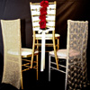 Party Decor specialty chair covers