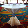 specialty sheer overlay chair cover